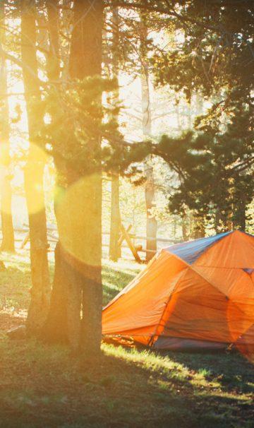 Lær af naturen og tag på telttur i det fri