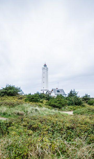 Lærerige oplevelser i Danmark for hele familien